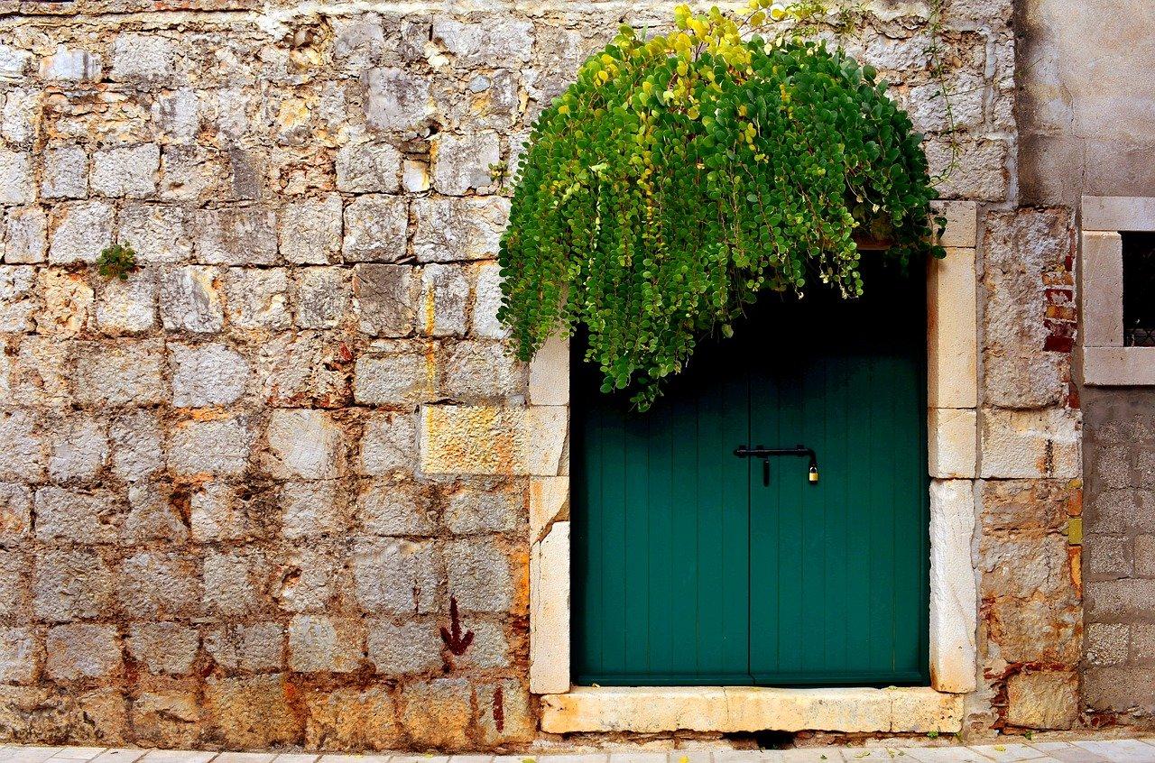 Porta con capperi su muro in pietra HD