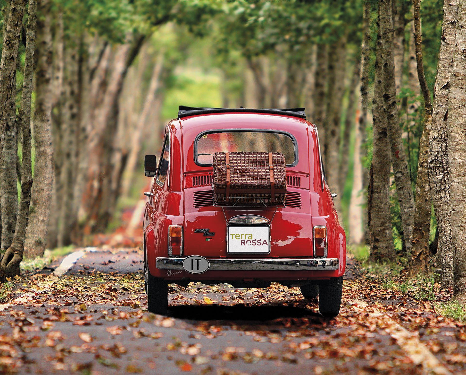 Fiat 500 en forêt HD